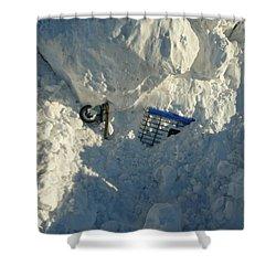 Cart Art No. 22 Shower Curtain