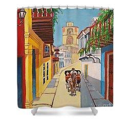 Cartagena's Calash Shower Curtain