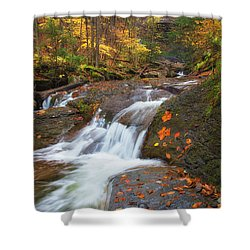 Cascade In The Glen Shower Curtain
