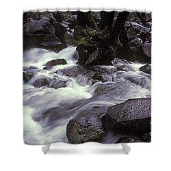 Cascade Shower Curtain by Ron Sanford