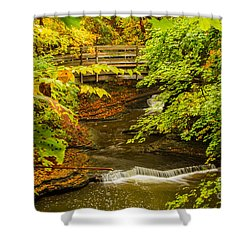 Cascadilla Gorge Cornell University Shower Curtain