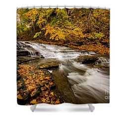 Cascadilla Gorge Trail Shower Curtain