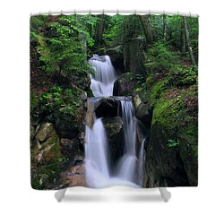 Cascading Brook Shower Curtain