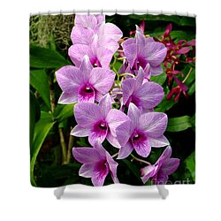 Cascading Lilac Orchids Shower Curtain