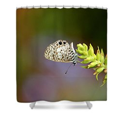 Cassius Blue Shower Curtain