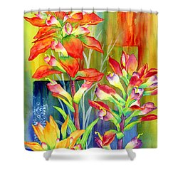 Castilleja Indivisa Shower Curtain