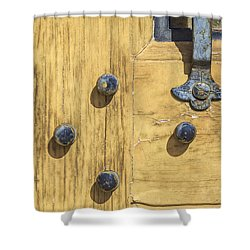 Castle Door II Shower Curtain