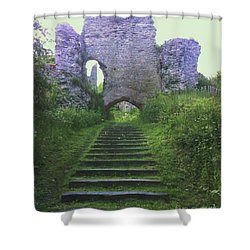 Shower Curtain featuring the photograph Castle Gate by John Williams