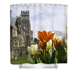 Shower Curtain featuring the photograph Castle Tulips by Marilyn Wilson