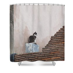 Shower Curtain featuring the photograph Cat Above The Roman Ruins by Tiffany Erdman