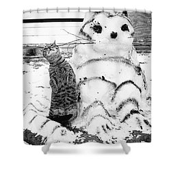 Cat And Snowcat Shower Curtain by Jack Rosen