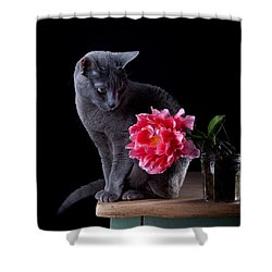 Cat And Tulip Shower Curtain by Nailia Schwarz