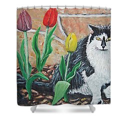 Cat By The Tulips  Shower Curtain