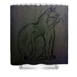 Cat Shower Curtain by Christy Saunders Church