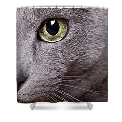 Cat Eye Shower Curtain