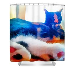 Cat Feet Shower Curtain