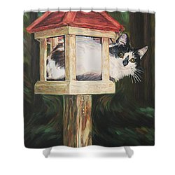 Cat House Shower Curtain