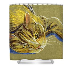 Cat With Gold Eyes Shower Curtain by MM Anderson