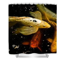 Catch Of The Day Shower Curtain by Ira Shander