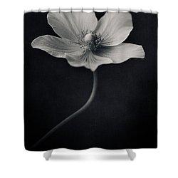 Catch The Light Shower Curtain by Priska Wettstein