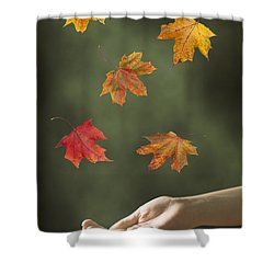 Catching Leaves Shower Curtain by Amanda Elwell