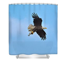 Catfish Delivery Shower Curtain by Jai Johnson