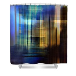 Cathedral 2 Shower Curtain by Terence Morrissey