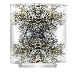 Cathedral Glass Shower Curtain by Debra and Dave Vanderlaan