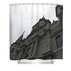 Shower Curtain featuring the photograph Cathedral II by Beth Vincent