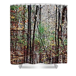 Cathedral In The Woods Shower Curtain by Joy Nichols