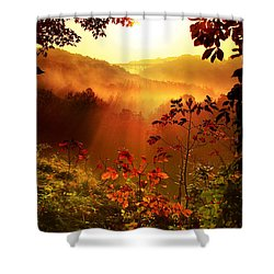Cathedral Of Light Shower Curtain