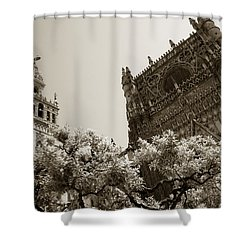 Cathedral Of Seville Shower Curtain