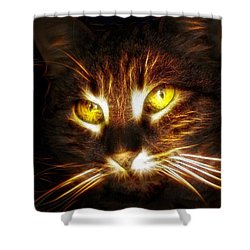 Cat's Eyes - Fractal Shower Curtain by Lilia D