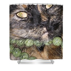 One In A Million... Beauty Of Cat's Eyes. Hello Pearl Collection Shower Curtain