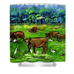 Cattle Grazing With Egrets Shower Curtain