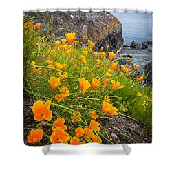 Cattle Point Poppies Shower Curtain