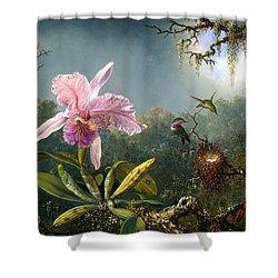 Cattleya Orchid And Three Brazilian Hummingbirds Shower Curtain by Emile Munier