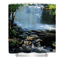 Cattyman Falls 2 Shower Curtain by Larry Ricker