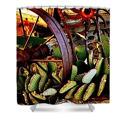 Shower Curtain featuring the photograph Caught In A Cactus Patch-sold by Antonia Citrino