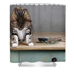 Caught In The Act Shower Curtain by Nailia Schwarz