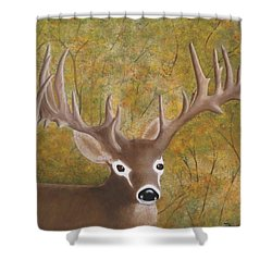 Caught In The Headlights Shower Curtain by Tim Townsend