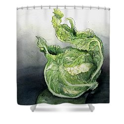 Cauliflower In Reflection Shower Curtain by Maria Hunt