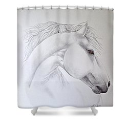 Cavallo Shower Curtain