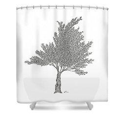 Cedar Shower Curtain