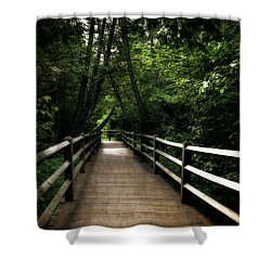 Cedar Pathway 2.0 Shower Curtain