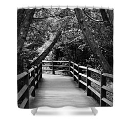 Cedar Pathway Shower Curtain