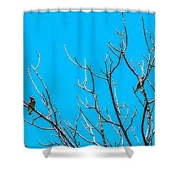 Cedar Wax Wings Shower Curtain