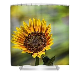 Celebrating The Sunlight Shower Curtain