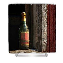 Celebrations Past Shower Curtain by Lois Bryan