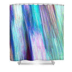 Celeritas 10 Shower Curtain